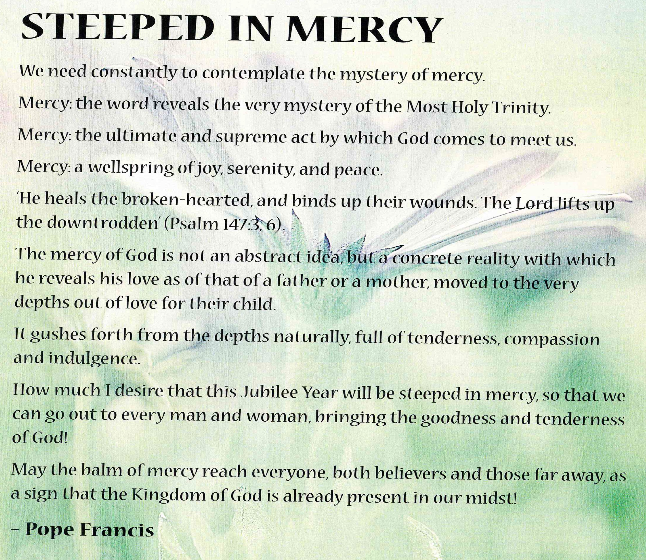 Steeped in Mercy